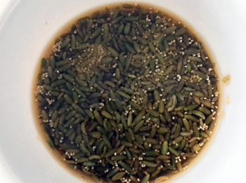 Soaked Poppy seeds Fennel seeds