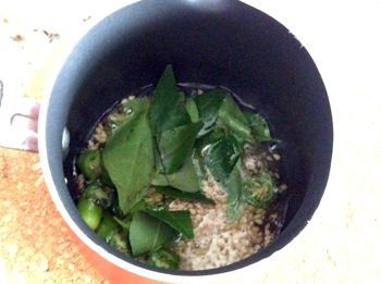 Curry Leaves Green Chillies